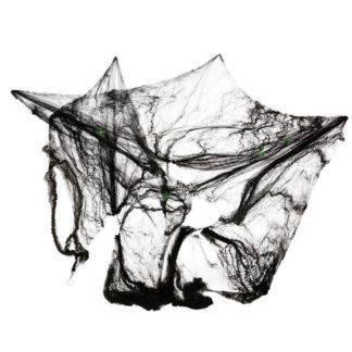 Паутина с пауками