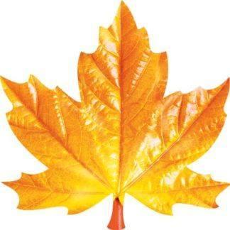 Украшения на скотче Золотая осень