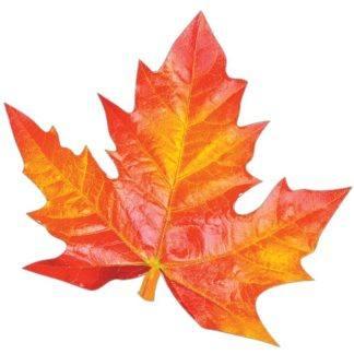 Осенний набор кленовый лист