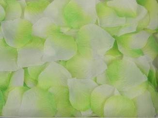 Лепестки роз, салатовый