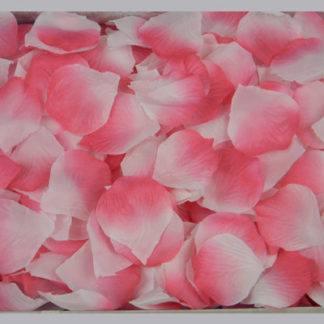 Лепестки роз, малиновый+белый