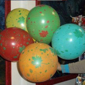 Воздушный шарик Осенние листья 10 шт.