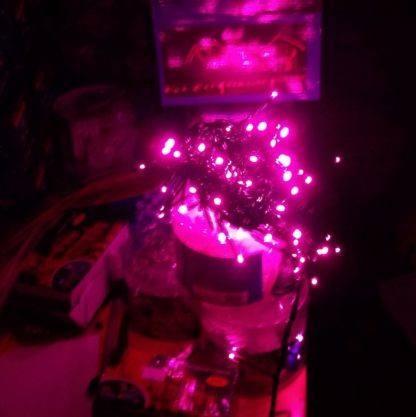 Светодиодная гирлянда Фиолетовая, 5м, Д320